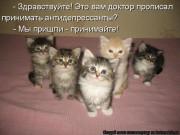 http://thumbnails19.imagebam.com/10262/57f28b102617334.jpg